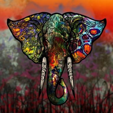 elephant head-sm