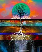 tree-color-3